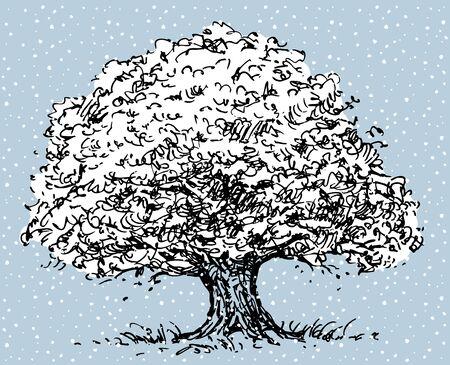 Old oak tree in winter Illustration
