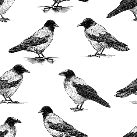 Seamless pattern of the crows sketches