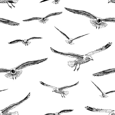Seamless pattern of the flying gulls sketches