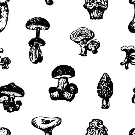 Seamless pattern of various edible mushrooms