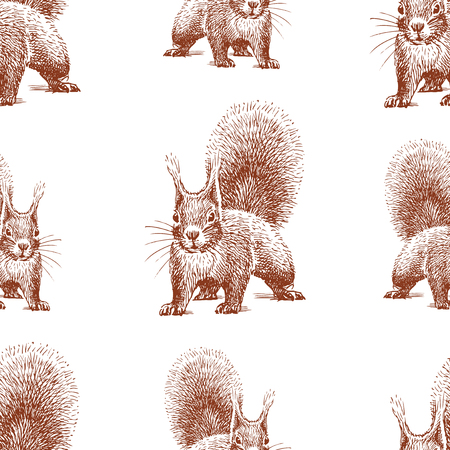 Seamless background of sketches of forest squirrel Çizim
