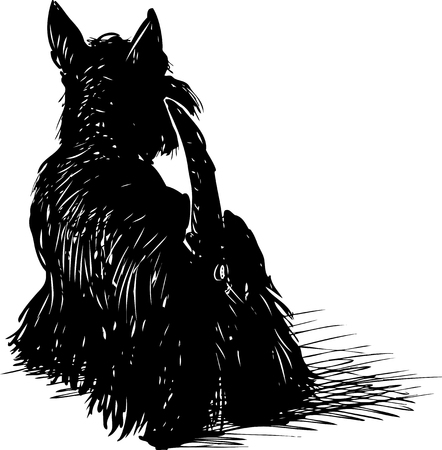 Vector drawing of a black scottish terrier