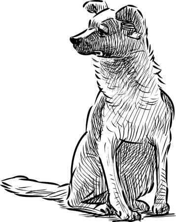 A hand drawing of a sitting dog