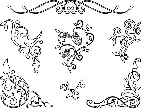 A set of floral designs elements