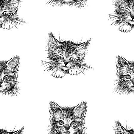 Seamless background of sketches of kittens faces