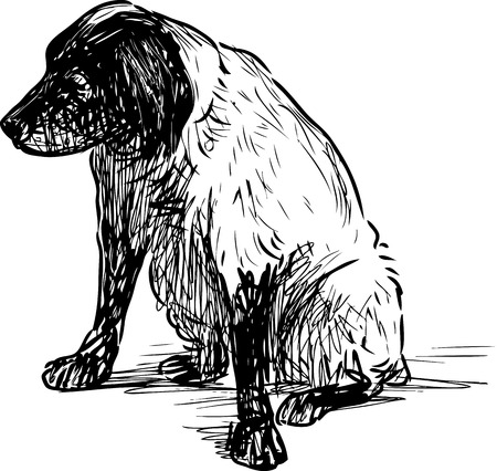 A sketch of a sitting old spaniel
