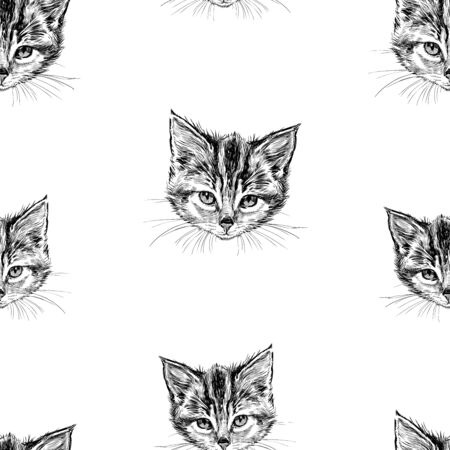 Seamless background of sketches of head of domestic kitten