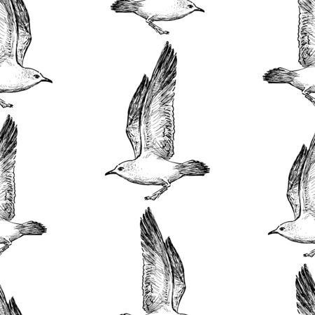 Seamless pattern of sketches of flying sea gulls