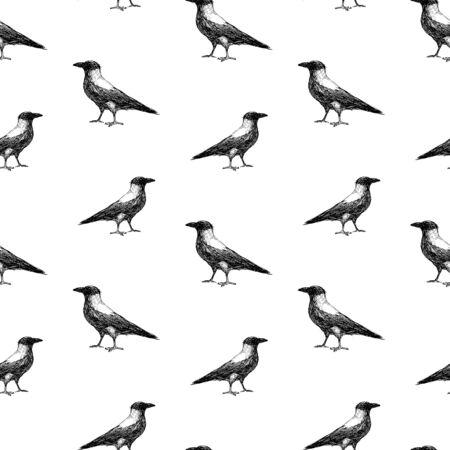 Seamless pattern of sketches of big crow Çizim