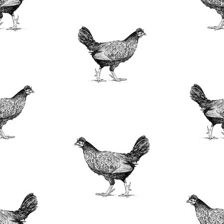 Seamless pattern of sketches walking black hens