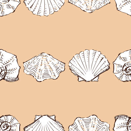Seamless vector pattern of sketches various seashells in rows