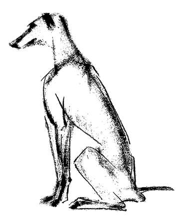 Freehand drawing of sitting young greyhound