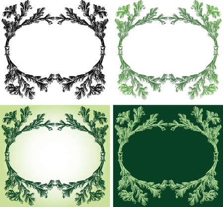Vector drawing of decorative oval floral frame