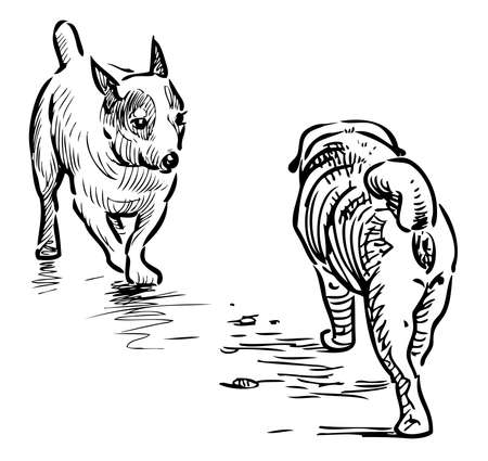 Outline drawing of two lap dogs meeting on a walk