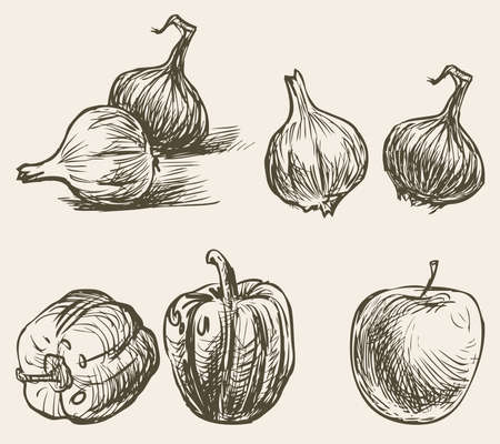 Sketches of sweet pepper, onion and apple