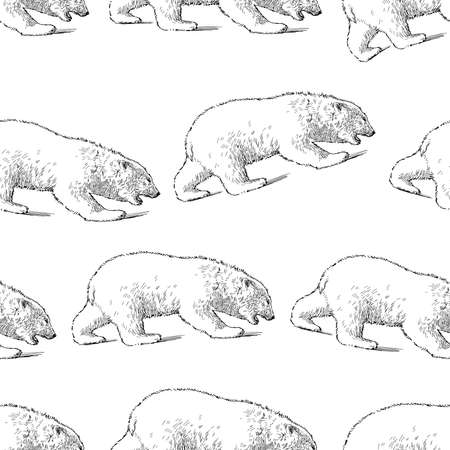 Seamless pattern of sketches polar bears walking in rows