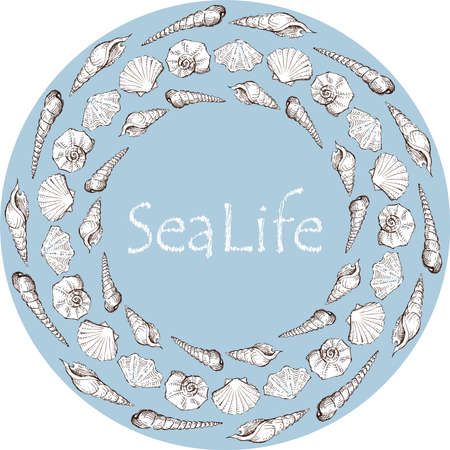 Decorative round background with sketches various seashells Vectores