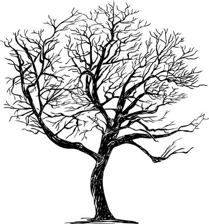Freehand drawing of silhouette single deciduous bare tree in winter season