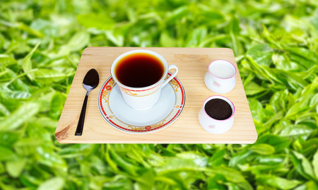 ceylon: Fresh World-Renowned Ceylon Black Tea