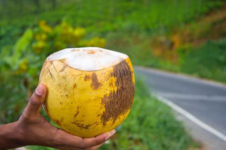finger tip: King Coconut