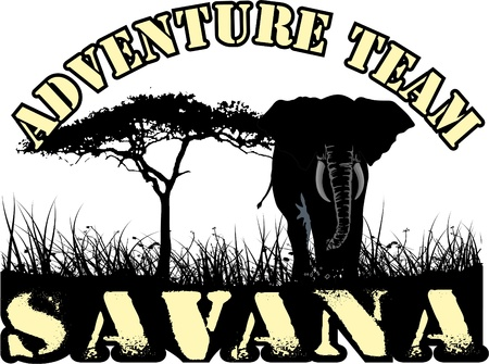 adventure team in africa in the savanna, a tree and an elephant grass