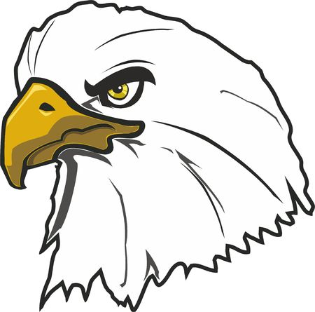 A large bird of prey eagle Illustration