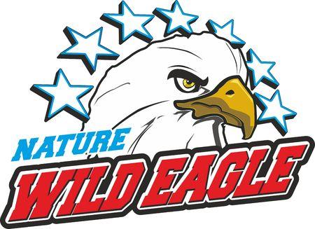 wild eagle Illustration