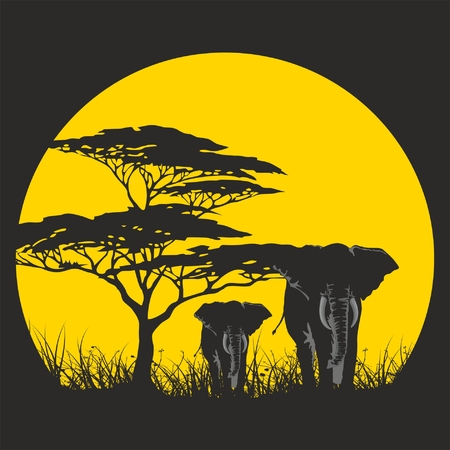 vector illustration of wild elephants family on sunset African savanna with trees. Illustration