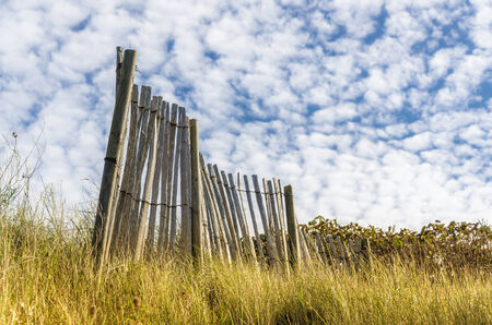 Remains of old obsolite fence in meadow on a sunny day from low angle view