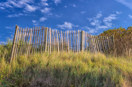 Remains of old obsolete fence in meadow on a sunny day from low angle view