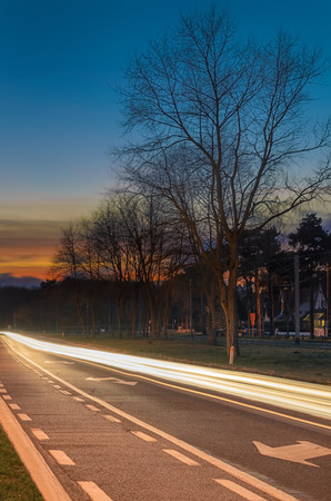 Cars light trails at sunset rural scene with big tree and woods in distance car heading away from sun branches blured from wind.
