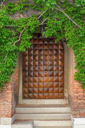Big Wooden Door of a House with a branch and green leaves in Venice, Italy