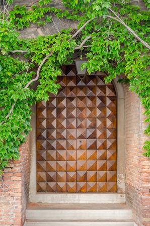 Porte en bois Big d'une maison avec une branche et des feuilles vertes à Venise, Italie
