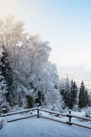 Small backyard on a mountain house covered with snow, trees and woods in a background, blue sky