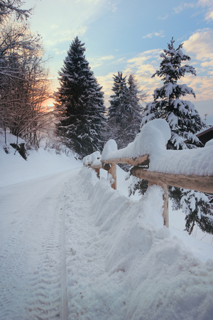 Read covered with snow going to the sun and a yellow wooden fence, pine trees, blue sky and rising sun