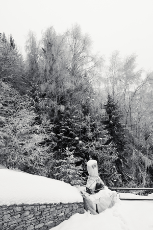 Small backyard with a frozen stone  barbecue, on a mountain house covered with snow, trees and woods in a background, monochrome