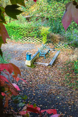 Lonely bench in colorful autumn garden, with trees bushes and many fallen leaves Banco de Imagens