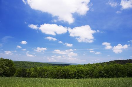 Rural landscape in the middle of the summer: green and blue. Stock Photo