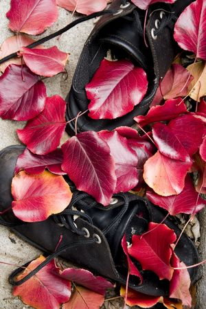 Abandoned shoes covered by the red fallen leaves