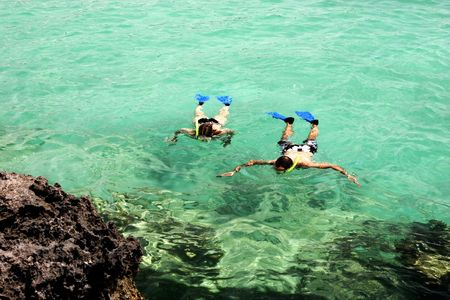 Snorkel diving in emarald water near Rivera Maya shore Standard-Bild