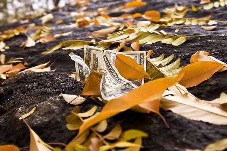 $ 20-Dollar-Scheine auf den Boden mit gefallenen Blättern.  Lizenzfreie Bilder