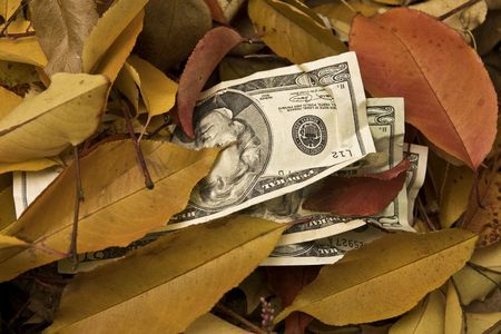 20 Dollar bills with autumn leaves.