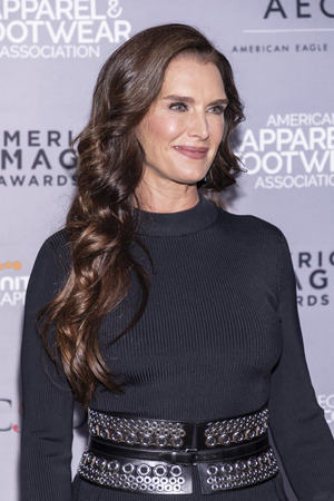 New York, NY, USA - April 15, 2019: Brooke Shields attends AAFA American Image Awards 2019 at The Plaza, Manhattan