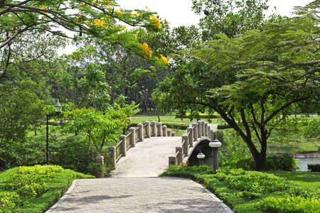 time lapse: Bridge in the park with green trees. Stock Photo