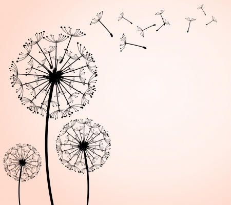 dandelion flower: The vector dandelion on a wind loses the integrity Illustration