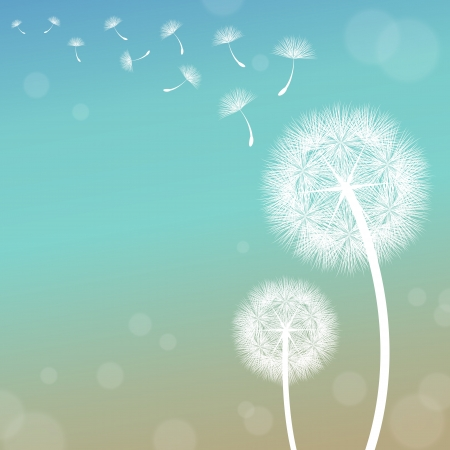 vector dandelion on a wind loses the integrity Vector