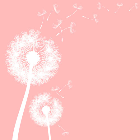 overblown: vector dandelion on a wind loses the integrity
