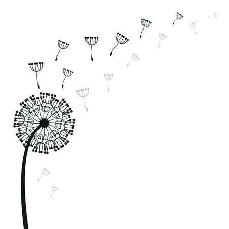 flimsy: vector dandelion on a wind loses the integrity