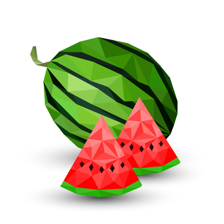 Watermelon healthy fruit Geometric illustration Vector
