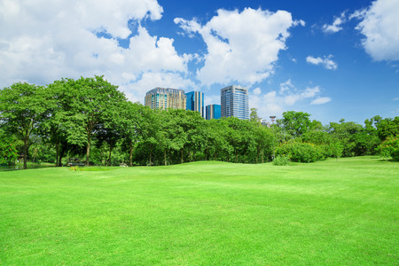 clouds: garden: green grass field in big city park Stock Photo